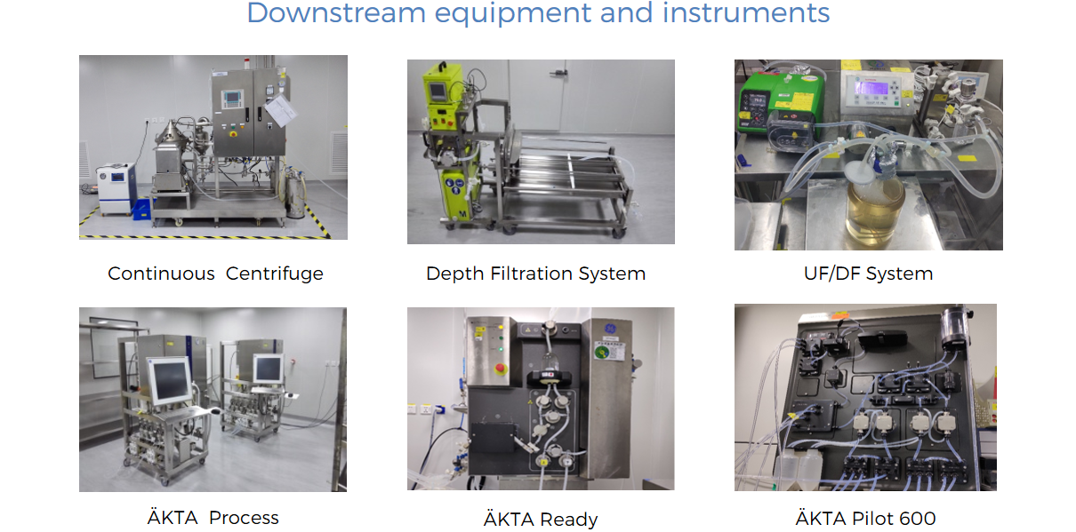 Downstream equipment and instruments