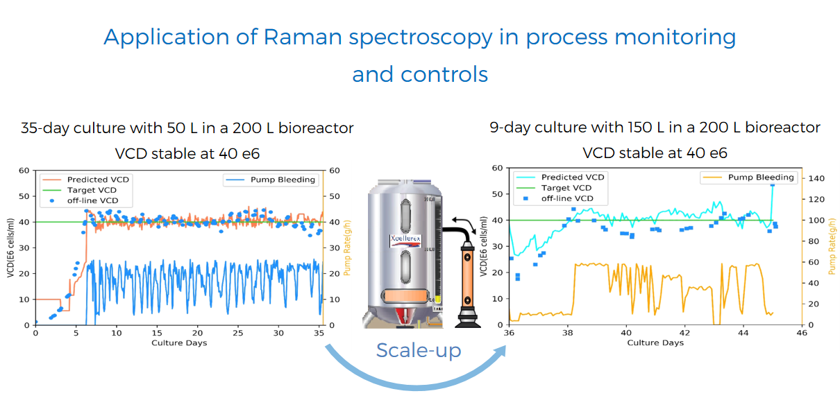 application of raman spectroscopy in process monitoring and controls